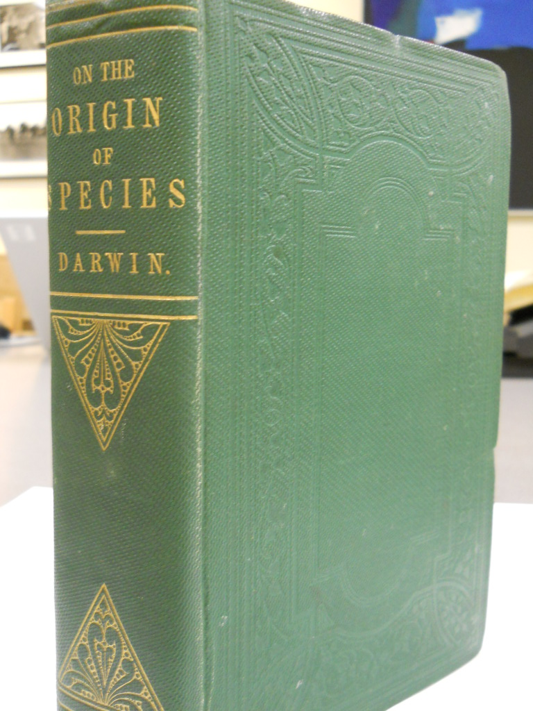 origin of species essays Includes bibliographical references and index the foundations of the origin of species : two essays written in 1842 and 1844.