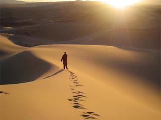 wandering alone in hot desert