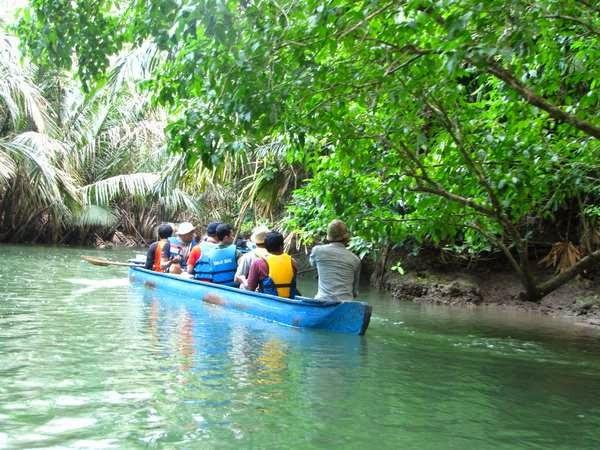 Hutan Paling Liar Di Indonesia