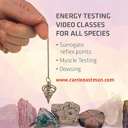 Energy testing classes.  Click the image for details.