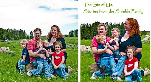 The Six of Us: Stories from the Shields Family