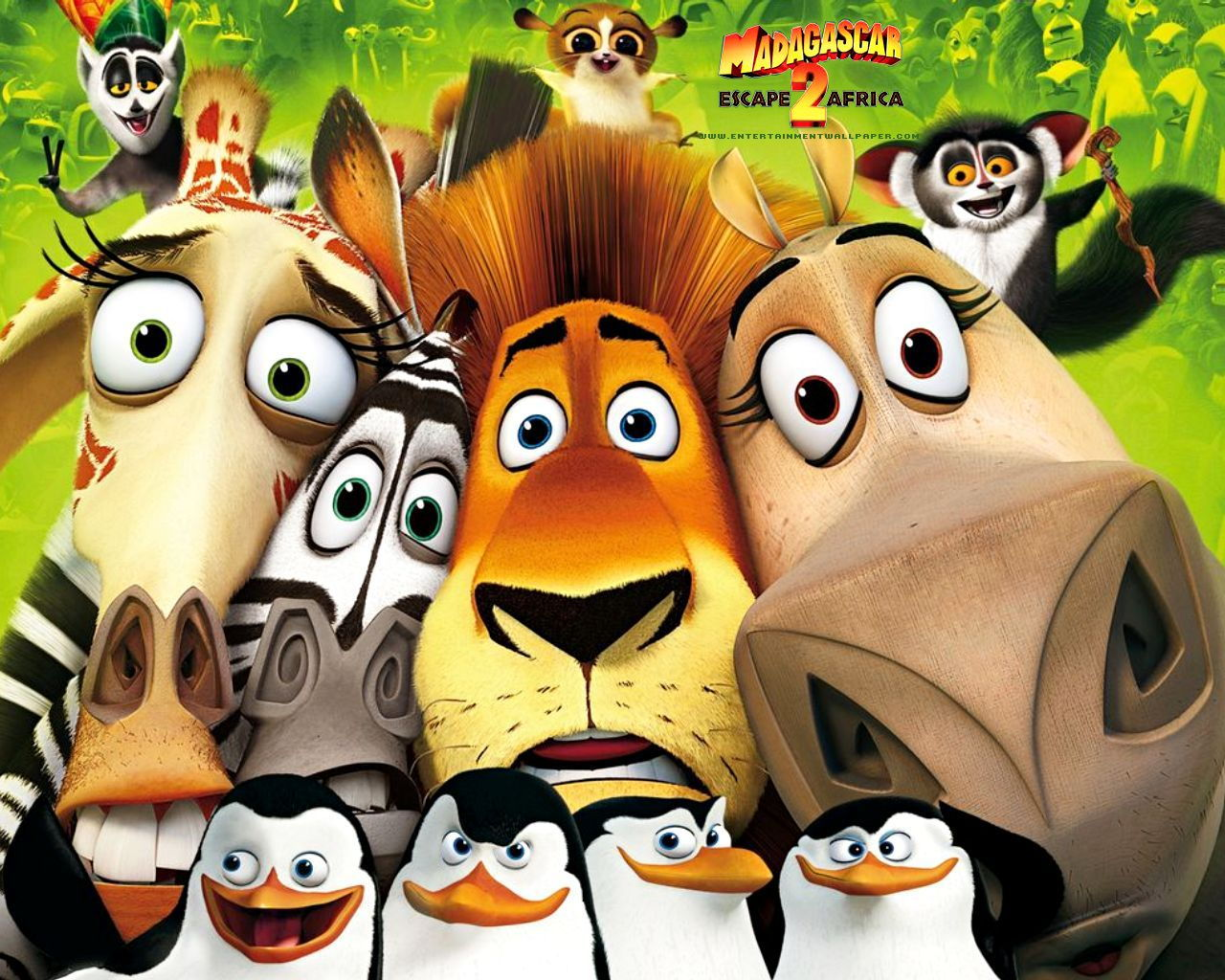 Download madagascar escape 2 africa through free movie torrents at
