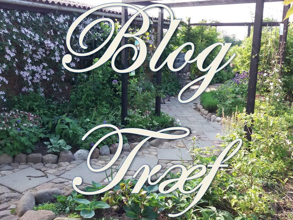 Blog Træf, søndag d. 2 juli 2017