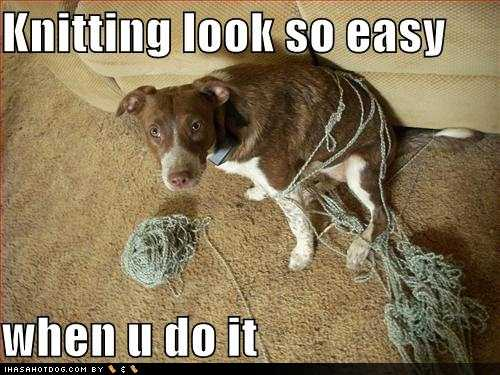 Funny Knitting Pictures : Funny knitting quotes quotesgram