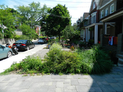 Leslieville front garden before Paul Jung Toronto Gardening Services