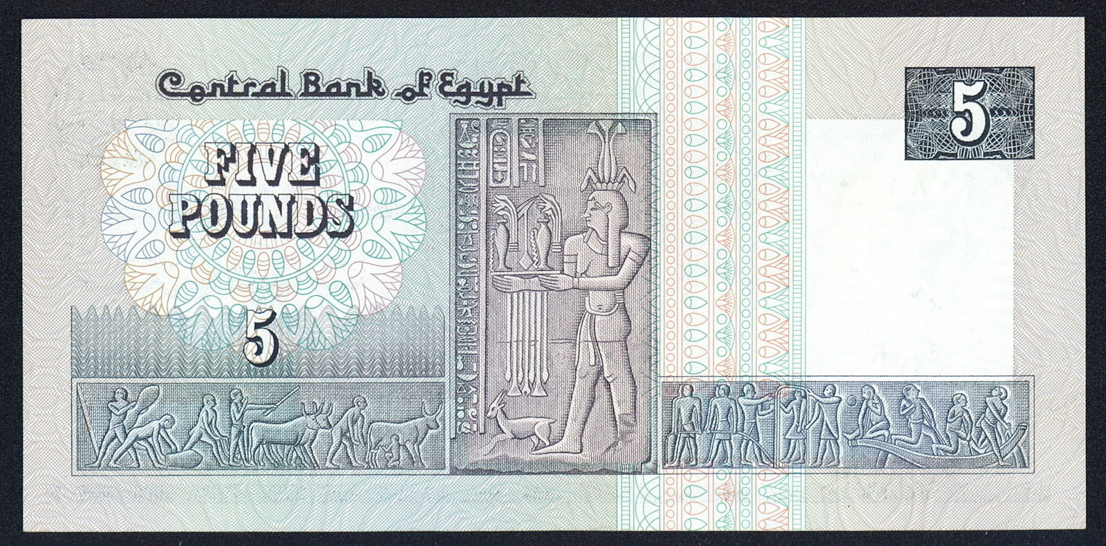 5 egyptian pounds note 1981world banknotes amp coins