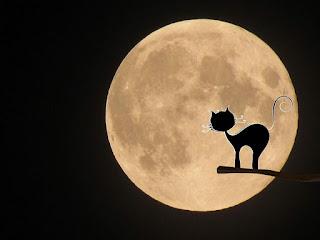 Luna llena en Halloween