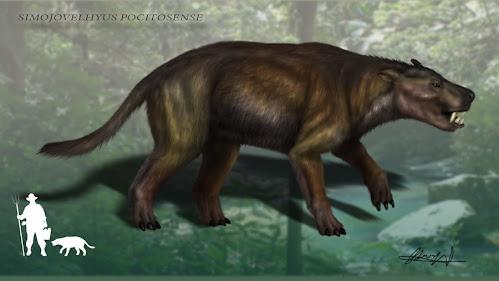 mamiferos antiguos Simojovelhyus