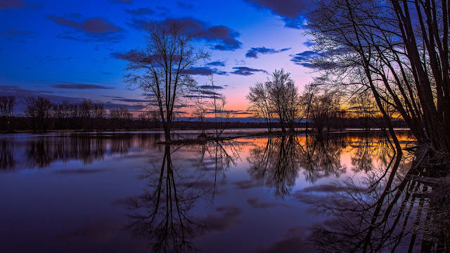 Canada Ontario Lake Reflection Trees Sunset Beautiful Scenery HD Wallpaper