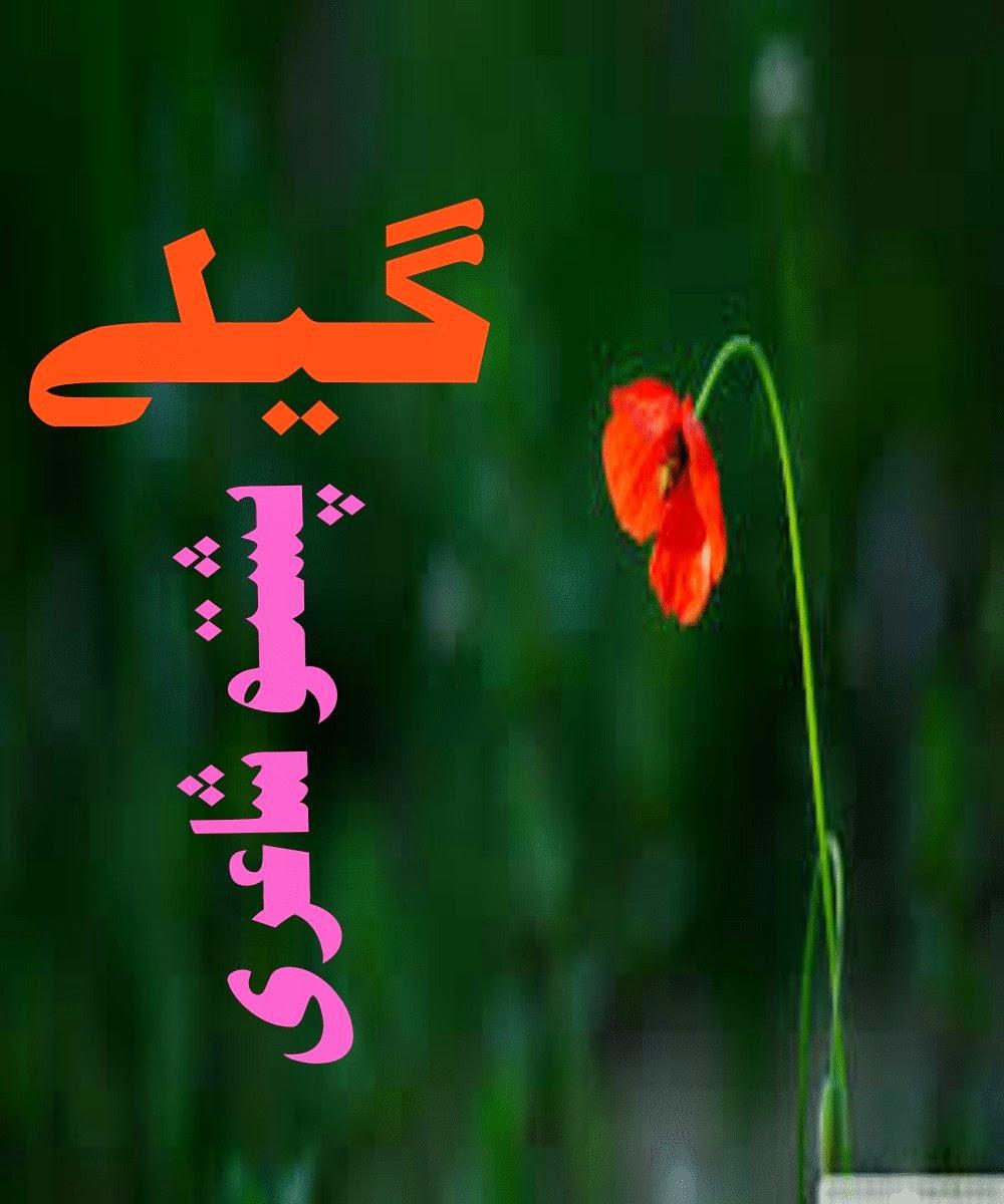 http://www.mediafire.com/view/15s5fau8q5kcpnt/Gele_Pashto_Ebook_By_Layaq_Zada-signed.pdf
