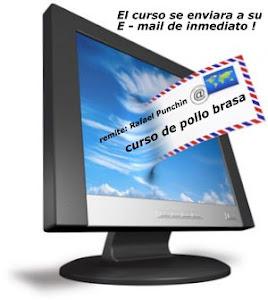 Whatsapp:  +51995558172 cursodepolloalabrasa@gmail.com