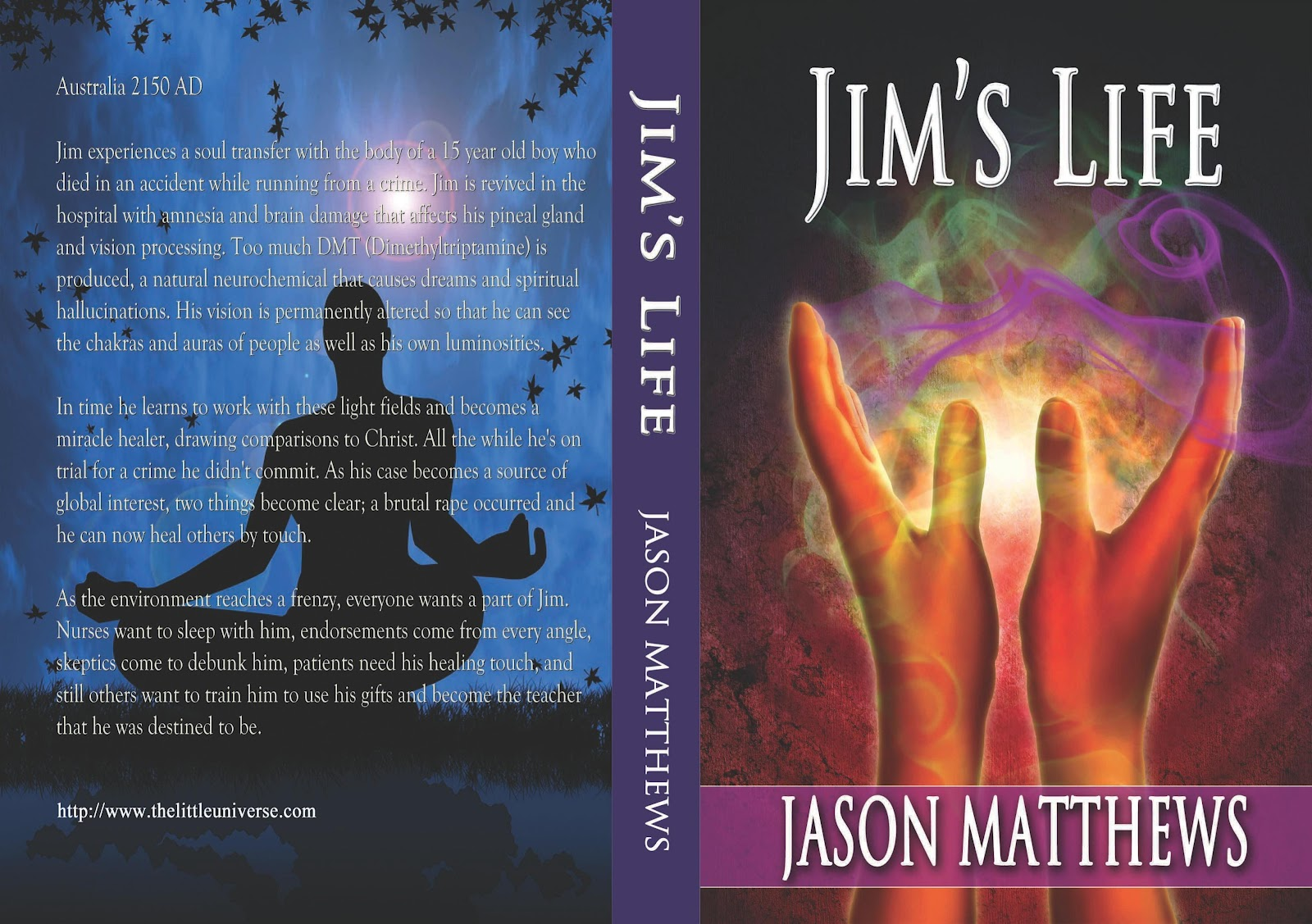 Jason matthews novels self publish connect 2012 imagine waking up in a new body in a hospital room with complete amnesia and brain damage that enables you to see the auras and chakras of people fandeluxe Images