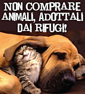Non comprare animali,adottali dai rifugi!