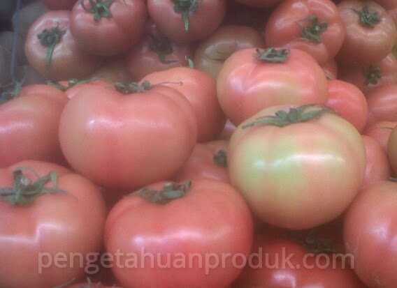 Seperti Apa sih? Tomat Rianto Itu