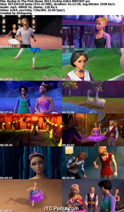Barbie in the Pink Shoes (2013) DVDRip H264 - MRFIXIT