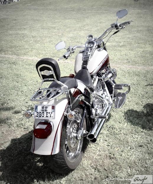 moto-siete-carolum