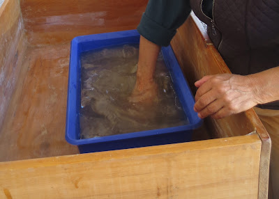 Mixing the pulp into the water