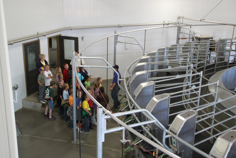 Learning about the milking parlor