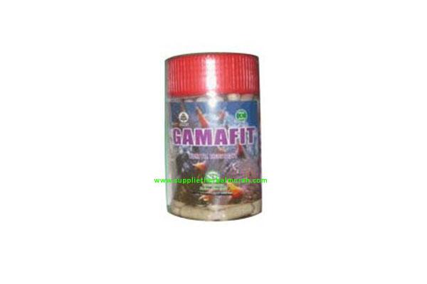 Gamafit 120 Kapsul (Gamat 100%)