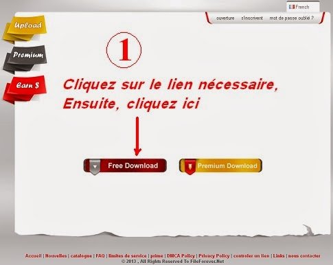 accedez au site de telechargement sur le site fileforever net