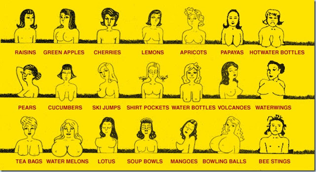 various forms of women's breasts