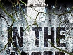 In the After, tome 1 de Demitria Lunetta
