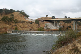Salmon Move Into Nimbus Hatchery As Folsom Lake Reaches Record Low Level