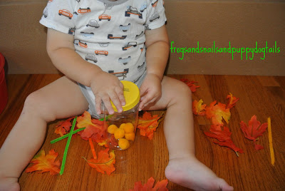 Fall Sensory Bin-toddler