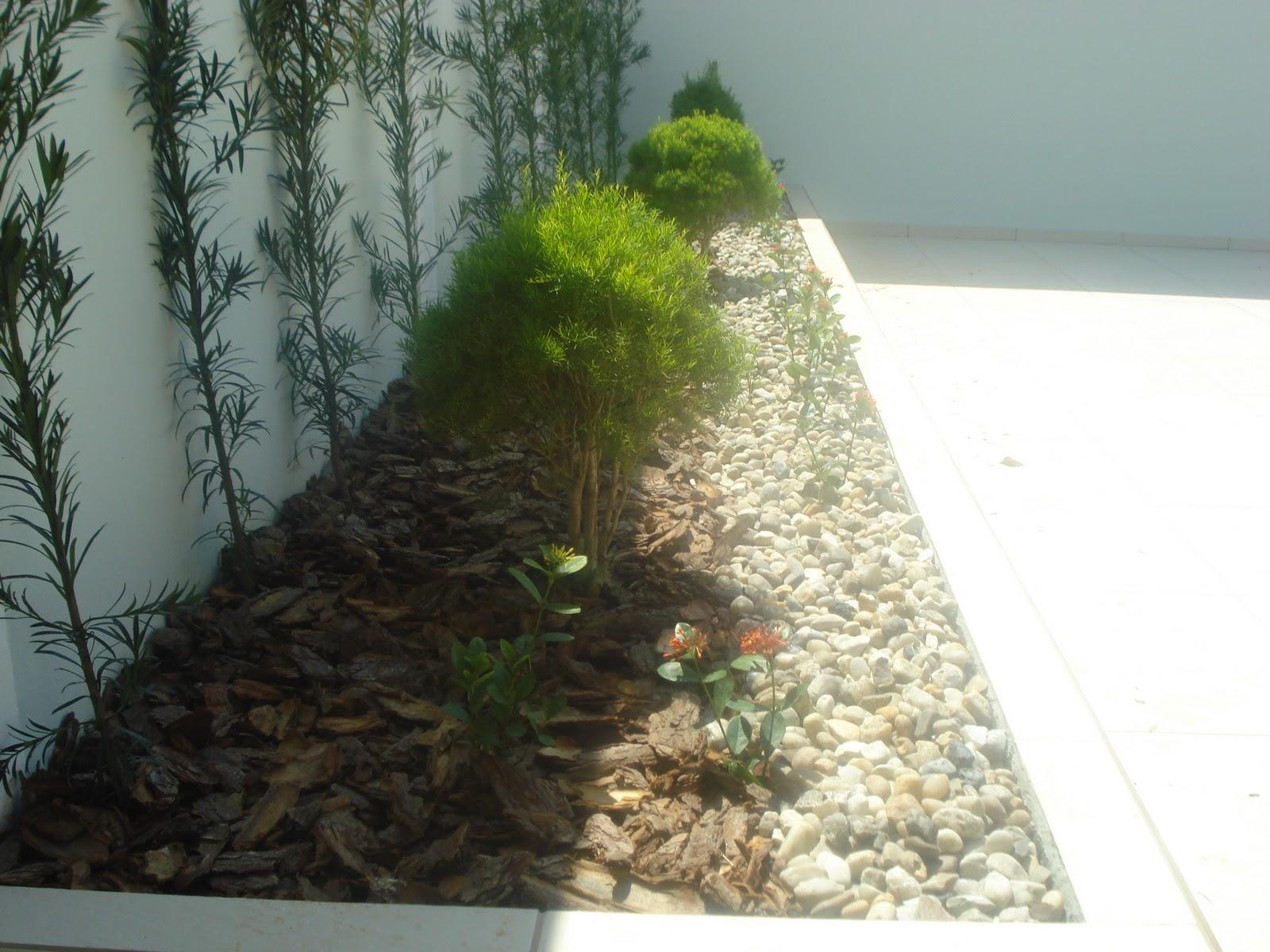 fotos de um jardim lindo : fotos de um jardim lindo:de Produtos Agropecuários Ltda.: Seu pequeno espaço merece um lindo