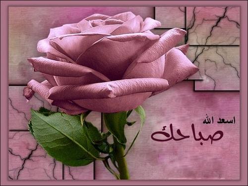 الخير صور صباح الخير good morning بطاقات