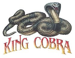 Kings Island King Cobra