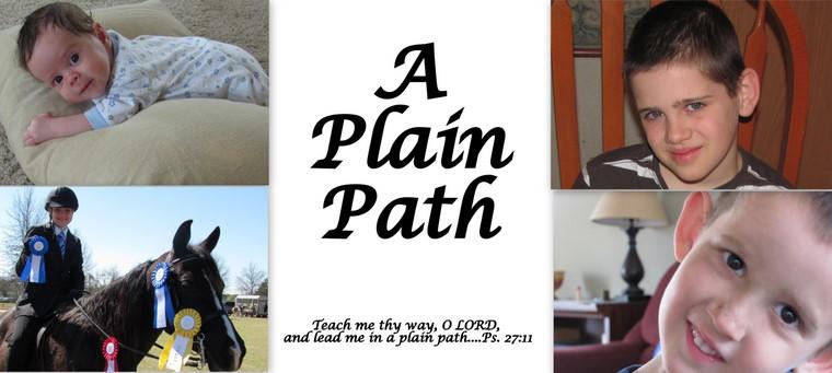 A Plain Path