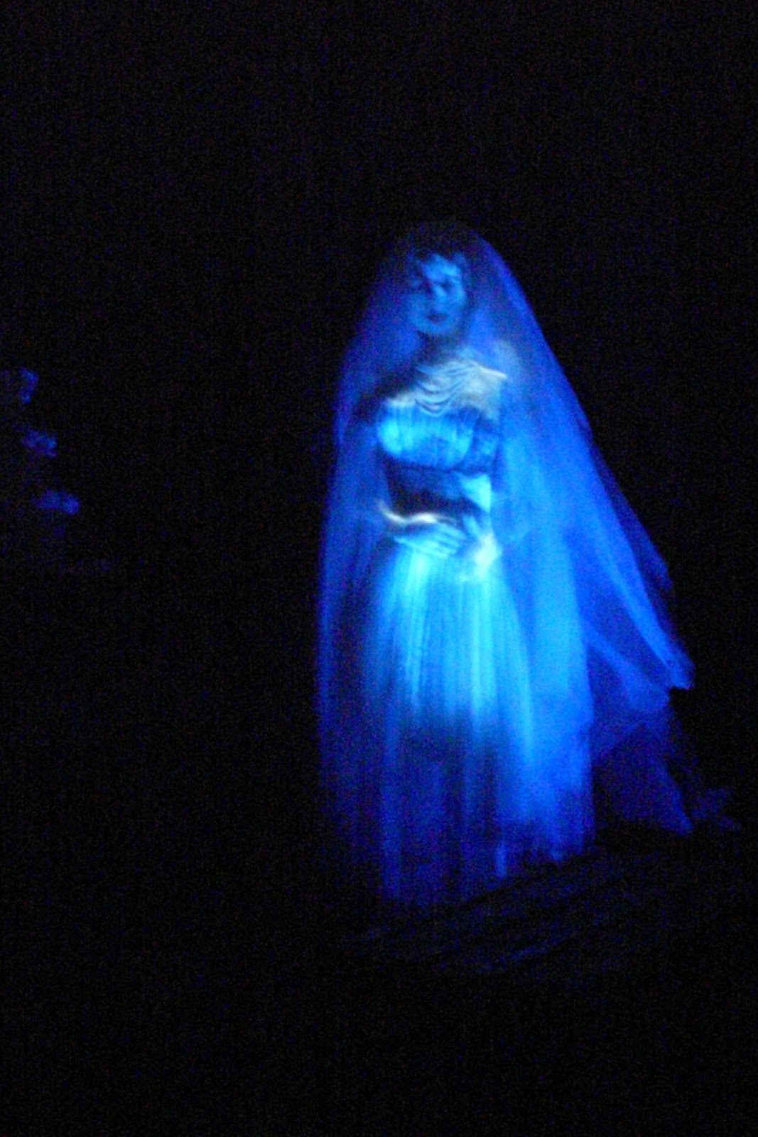 The Haunted Mansion At The Magic Kingdom Tips From The