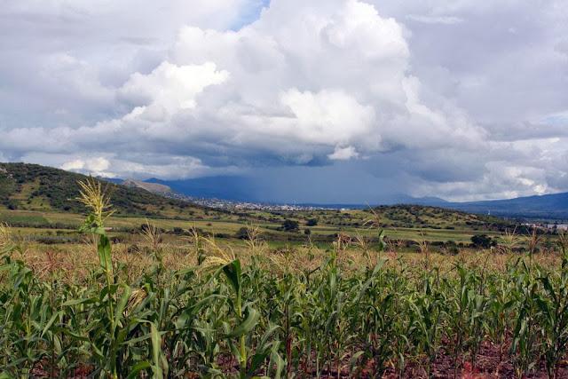 teotitlan del valle oaxaca mexico