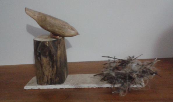 nido y pájaro