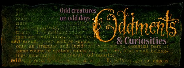 Oddments & Curiosities