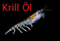 Krillöl Ursprung