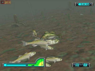 Free download game pro bass fishing 2003 pc eng gratis for Pro fishing games