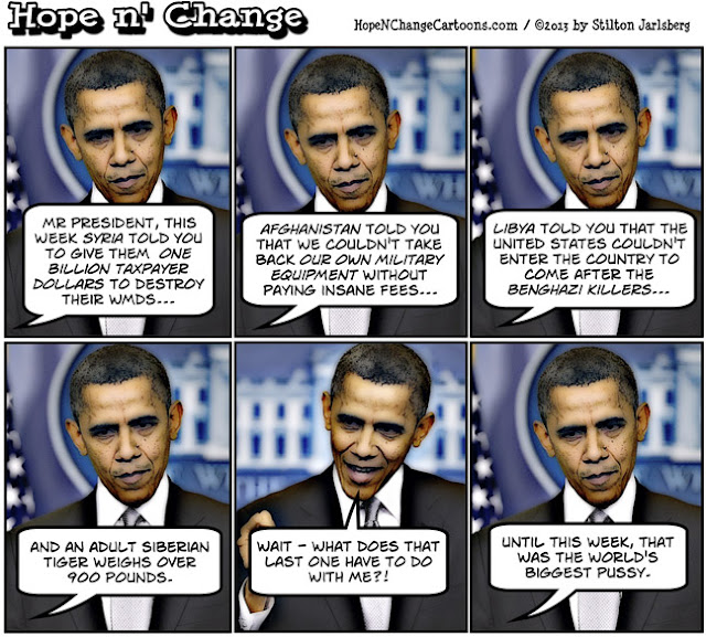 obama, obama jokes, political, humor, cartoon, conservative, hope n' change, hope and change, stilton jarlsberg, syria, afghanistan, libya, pussy