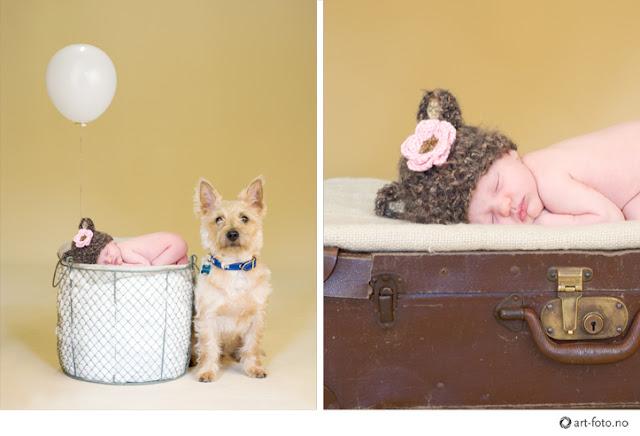 2 - En liten prinsesse er født!