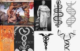 http://silentobserver68.blogspot.com/2012/11/dna-le-meraviglie-racchiuse-dentro.html