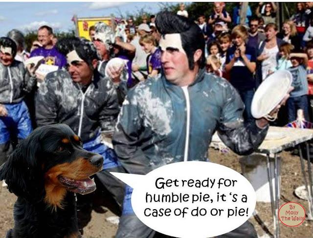 The Coxheath annual Custard Pie throwing Contest.