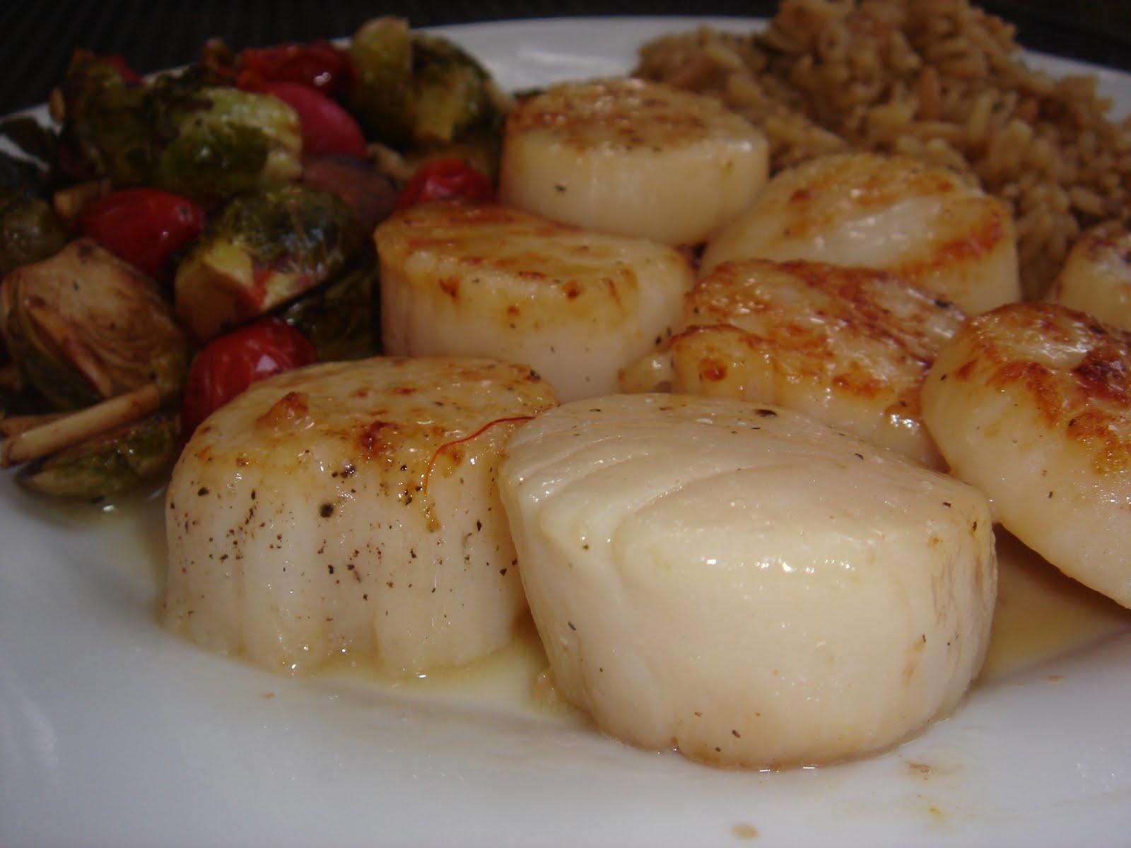 ... sea scallops in saffron sauce 3 jpg sea scallops in saffron sauce