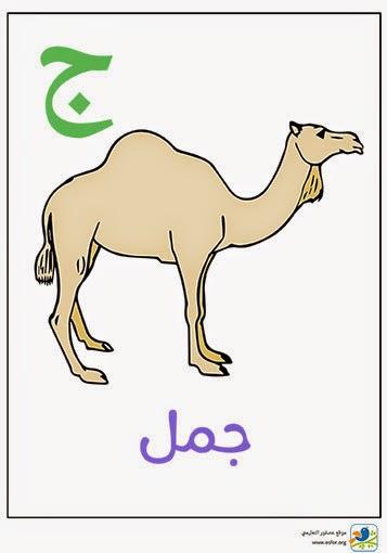 ملصق تعليمي للأطفال لتعليم حروف الهجاء (حرف الجيم) www.osfor.org