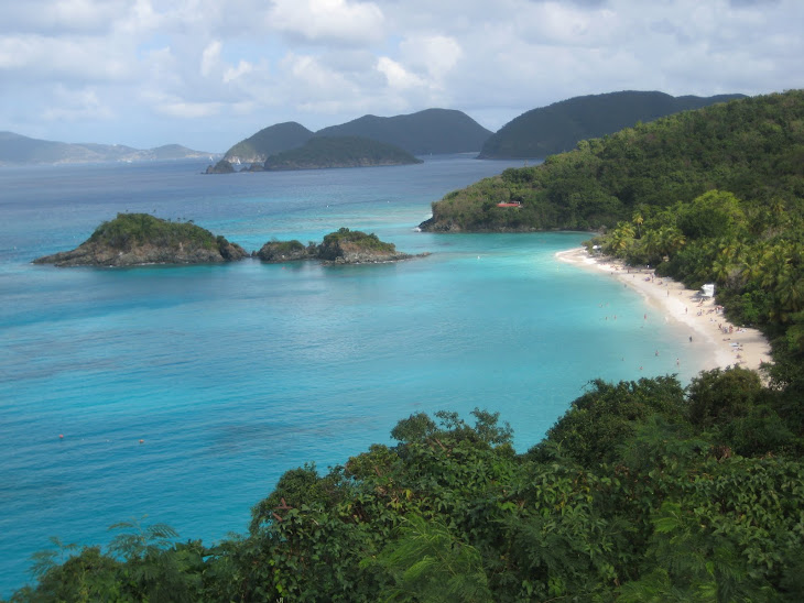 Spectacular view of Trunk Bay on St-John's