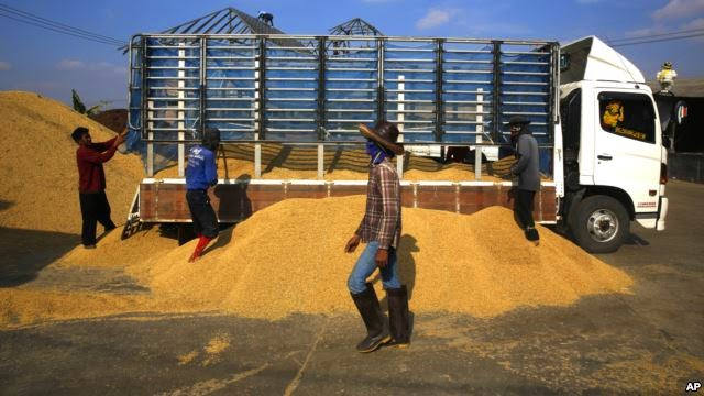 http://www.voanews.com/content/thai-rice-shipments-to-west-africa-curtailed-by-ebola-outbreak/2436809.html