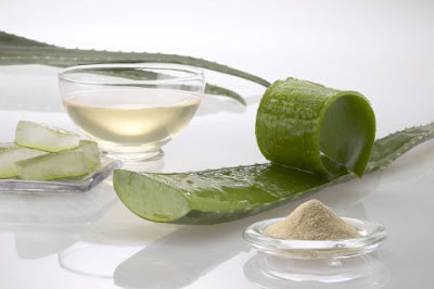4 Ways to lose weight with Aloe Vera