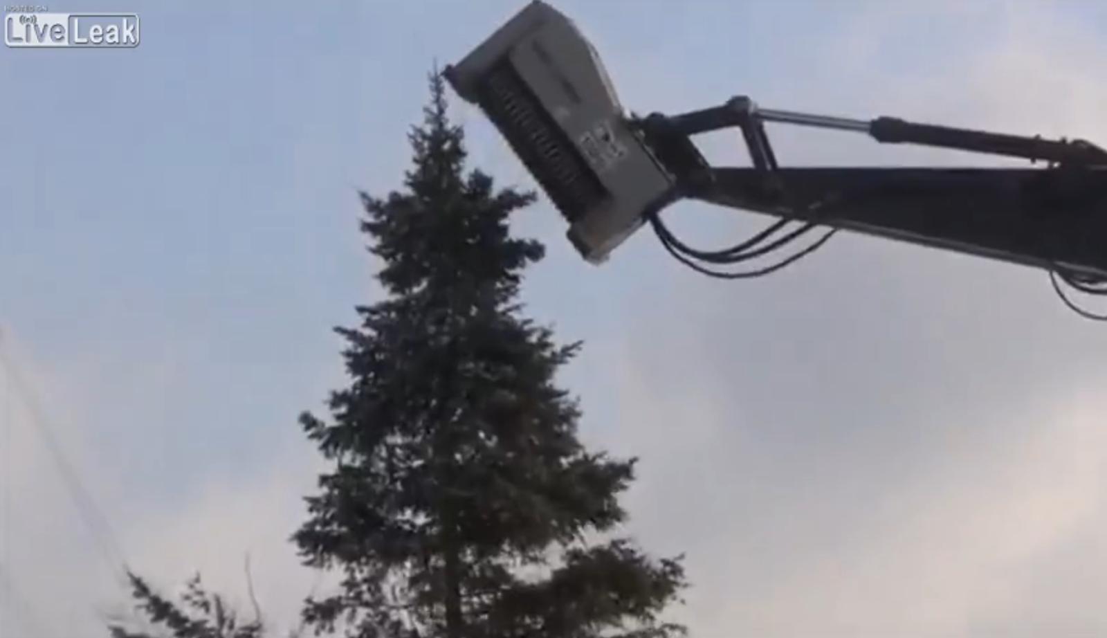 Mesin yang mampu hancur leburkan pokok dalam beberapa saat