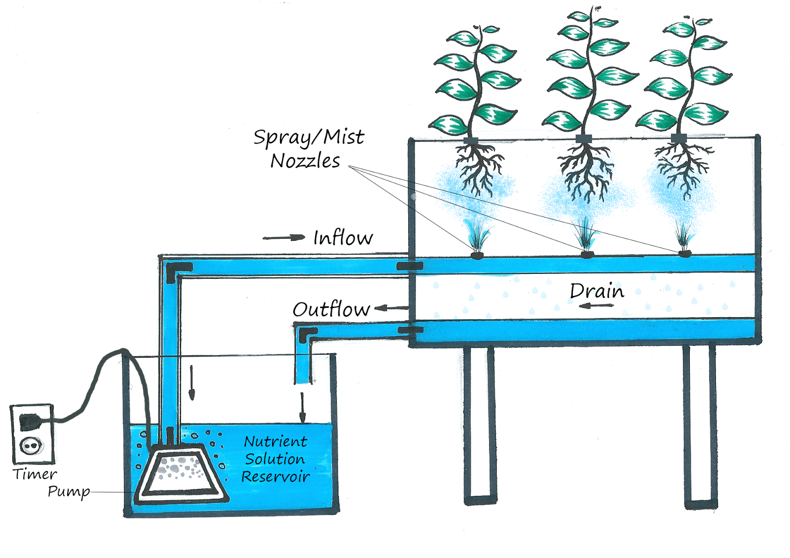 hydroponic system How to build a homemade hydroponics system building your own water works system is quite simple and can be fun, if you know how to follow instructions this type of.