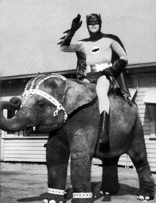 batman elefante adam west